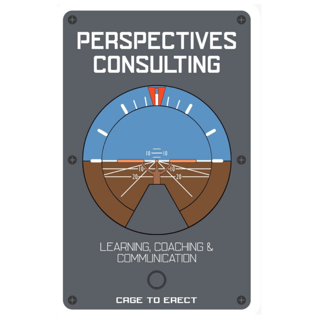 perspectives consulting